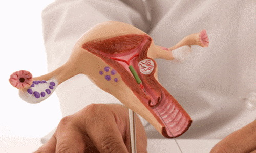 Гинекология и Акушерство - Медицинская Клиника УЗИ 4D