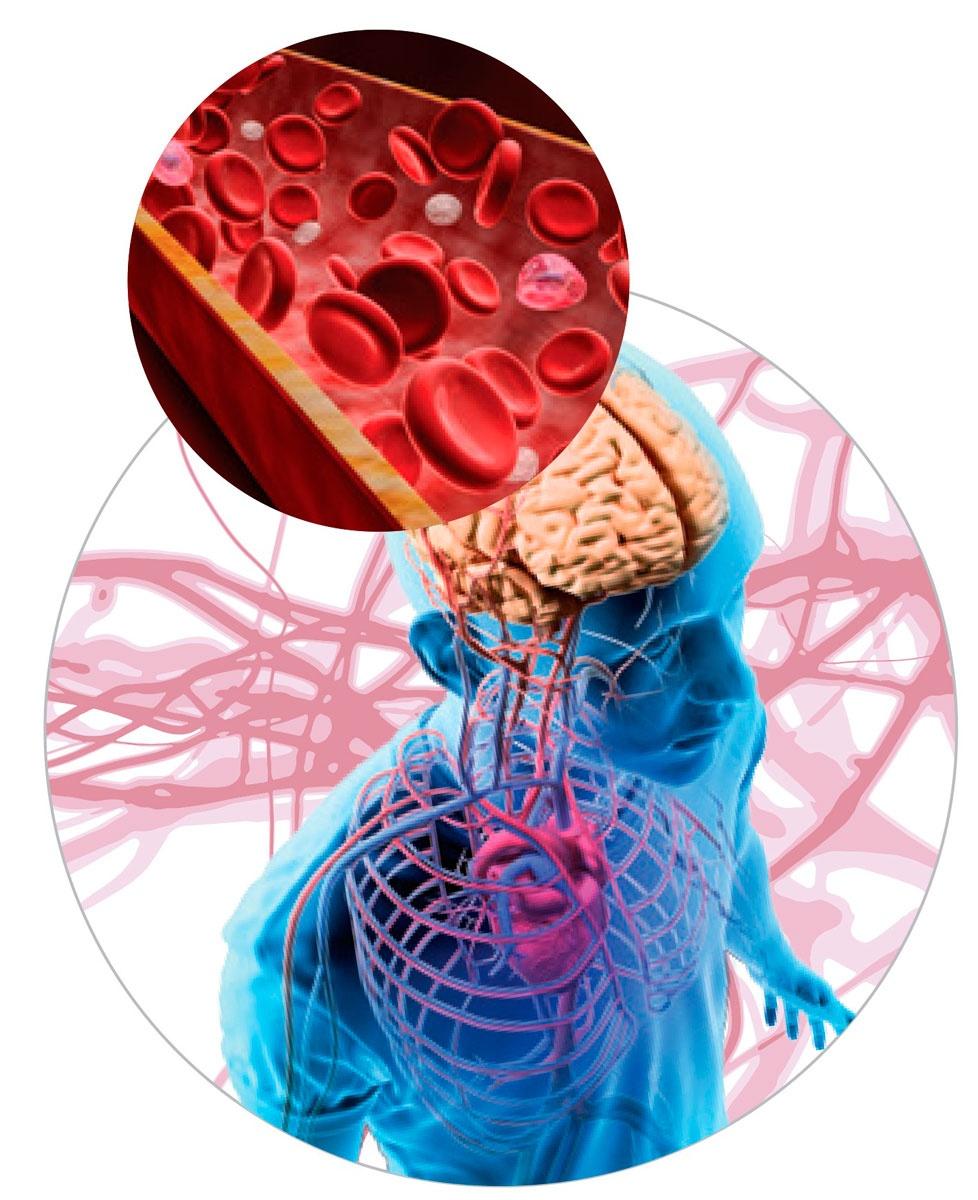 Последствия кислородного голодания мозга